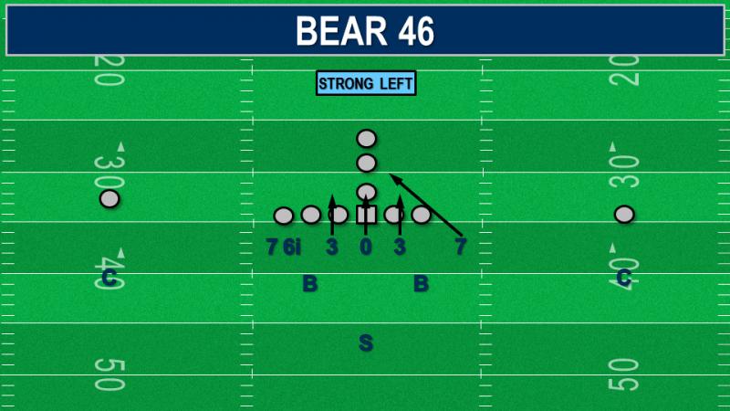 Bear 46