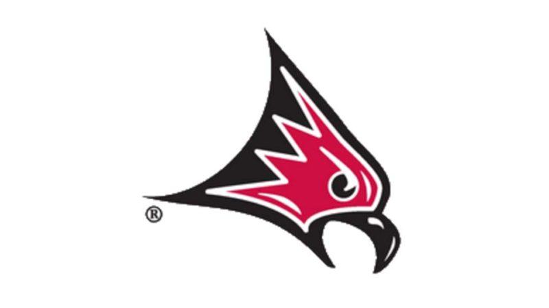 UW-River Falls Falcons